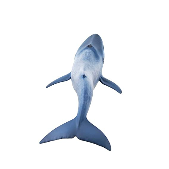 Schleich 14696 - Spielzeugfigur Blauwal: Amazon.de: Spielzeug