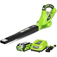 GreenWorks 24252 G-MAX 40V Li-Ion Cordless Sweeper with Battery and Charger
