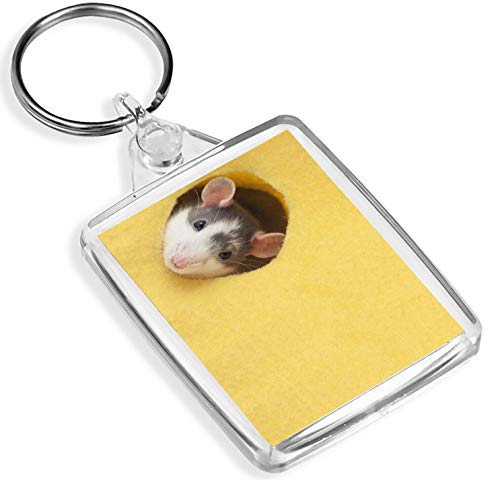 Destination Vinyl Keyrings Cheeky Fancy Rat Keyring - IP02 - Pet Mouse Mice Rodent Animal Funny Gift #14884