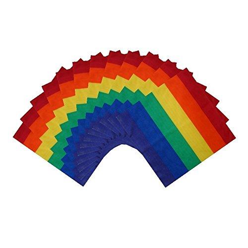 SSK Gay Pride Rainbow Bandana 12-Pack. One Dozen Colorful Bandanas (Thick Stripes)