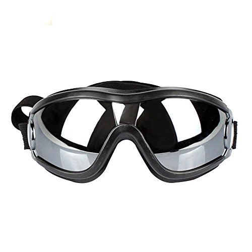 XPangle Dog Goggles - Large Dog Puppy Sunglasses UV Protection Waterproof Windproof with Adjustable Strap Pet Goggles for Medium to large Dog, Black by XPangle
