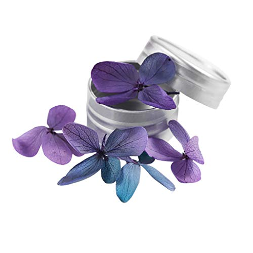 TIFENNY Dried Flower Manicure Art Decoration 12 Colors Real Dry Nail Flower Manicure Nails DIY Stickers