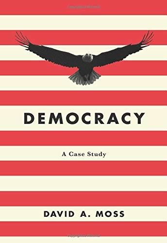 Image of Democracy: A Case Study