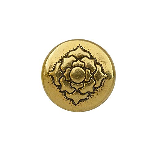 TierraCast Bead, Puffed Coin with Lotus Design 4x13.5mm, 2 Pieces, Antiqued Gold Plated (Puffed Beads Coin)