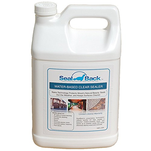Encore SealBack Clear Acrylic Pool Deck Sealer - 1