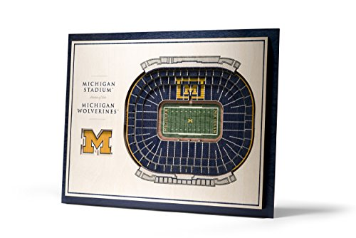 - NCAA Michigan Wolverines 5-Layer Stadiumviews 3D Wall Art