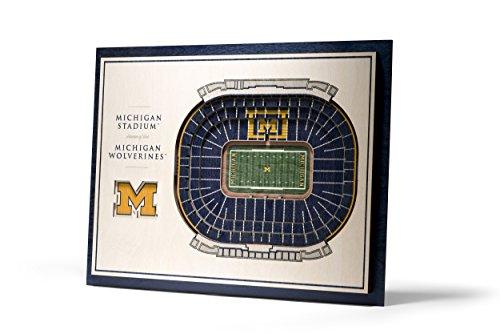 YouTheFan NCAA Michigan Wolverines 5-Layer StadiumView 3D Wall Art ()
