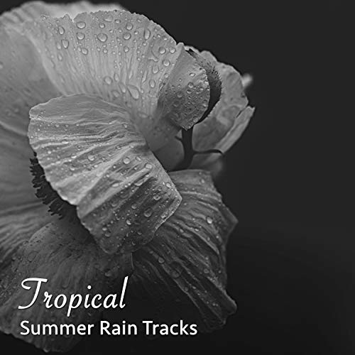 Rain Sound: Tropical Forest by The Relaxing Sounds of Swedish Nature