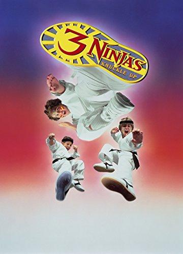 3 Ninja Kids Film