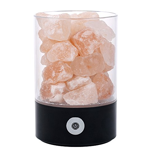 TOMNEW Natural Himalayan Salt Lamp, USB Real Himalayas Himil