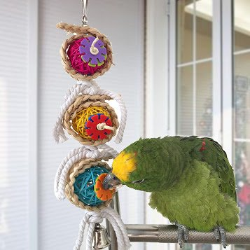 New Bird Bites Climb Chew Toys Parrot Toys Pet Hanging Cockatiel Parakeet Swing Parrot - Jersey Gardens Mall New