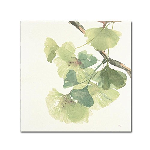 Gingko Leaves II Light by Chris Paschke, 35x35-Inch Canvas Wall - Shades Chris Brown
