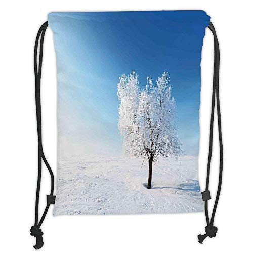 - Custom Printed Drawstring Backpacks Bags,Winter Decorations,Single Tree on Snow Cover Field with Vibrant Sky Blizzard Frozen Concept,Blue White Soft Satin,5 Liter Capacity,Adjustable String Closu