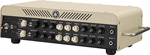 Custom Head Cabinet Amp (Yamaha THR100HD 100-Watt, Dual-Channel Modeling Amplifier)