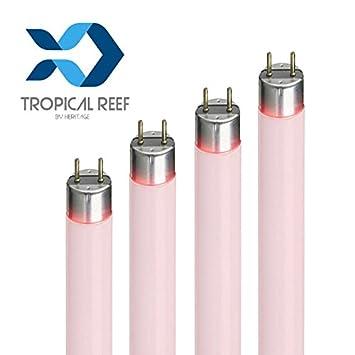 Aquarium Leuchtstoffrohre Premium T8 Super Tropisches Rosa 15 W