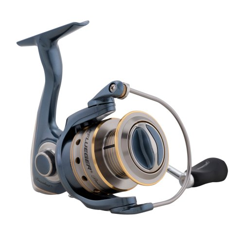 Pflueger 6925 President Spinning Fishing Reel