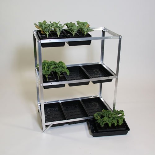 Economy Seed Tray Rack Two Wests and Elliott