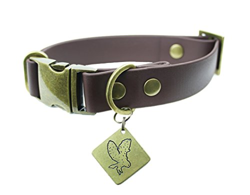 co collar brass - 6