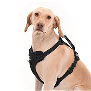 Dog Harness for All Breeds - No Pull Effect through Front and Back Control Reflective, Adjustable Harness With Handle.Excellent for Training, Walking or Car Ride (Small, Black)