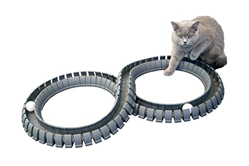 Magic Cat Track and Ball Toy for kittens pets kitties -
