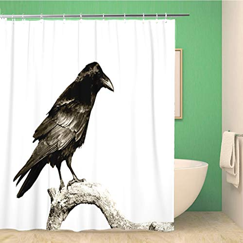 Awowee Bathroom Shower Curtain Black Birds Perched Common Raven Corvus Corax Halloween Crow 72x78 inches Waterproof Bath Curtain Set with Hooks -