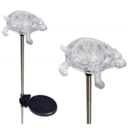 Turtle Solar Lights Outdoor in Florida - 7