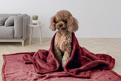 (Love's cabin Pet Dog Puppy Blanket for Crate, Kennel, Bed and Couch with Paw Prints, 2-Pack Premium Fluffy Fleece Dog and Cat Blankets and Throws Burgundy Red for Kitten Puppy and Other Small Animals)