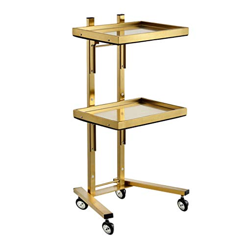 SPA Beauty Hairdressing Rolling Trolley, Beauty Salon Trolley,Rolling Utility Cart,Foldable, Space Saving, 304 Stainless Steel,40X30X86cm