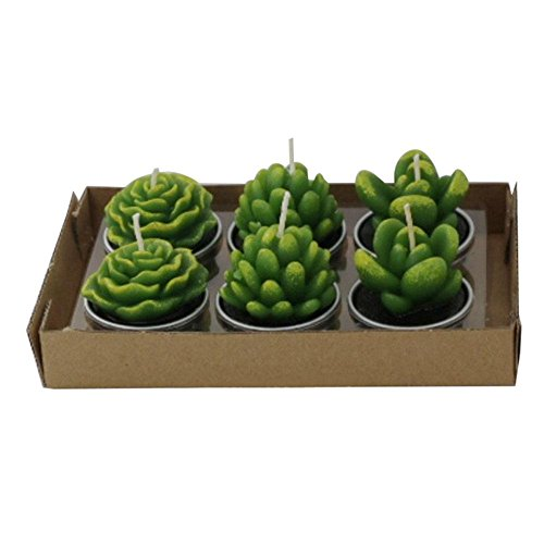 Real Flame Candles, Set of 6 Smokeless Handmade Delicate Succulent Cactus Tealight Candles for Wedding Birthday Party Home Decoration By Aolvo
