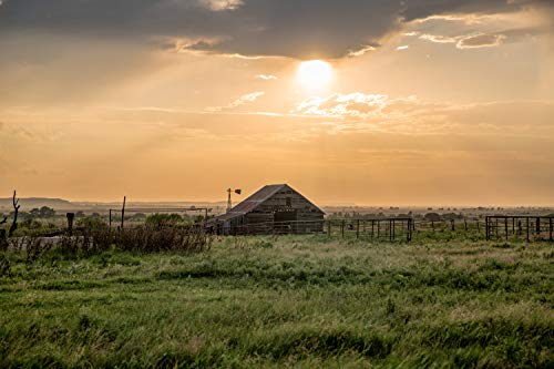 (Country Photography Wall Art Print - Picture of Rustic Barn in Warm Sunlight on an Early Summer Evening in Northwest Oklahoma Americana Decor 5x7 to 40x60)