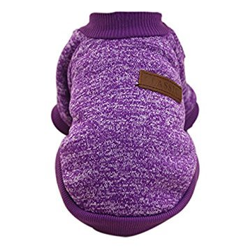 yorkie dog clothes - 5