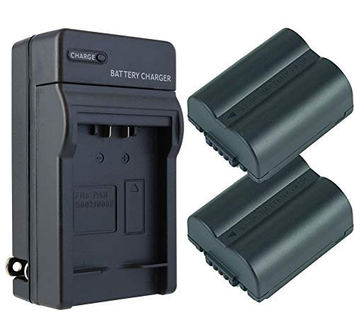 Panasonic Camera Battery Cgr S006A - 1