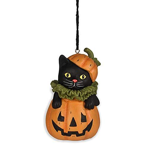 Black Cat in Jack O'Lantern