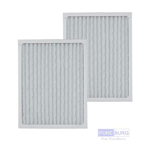 Pureburg 2-Pack Replacement HEPA Air Filters for Hunter HEPAtech 30920 Fits 30050 30055 30065 37065 30075 30080 30177 30905 30054 30062 30070 30832 30868 30882 30883 37055 Air Purifier