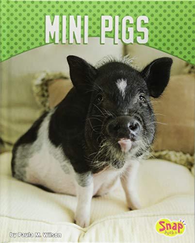Mini Pigs (Cute and Unusual Pets)