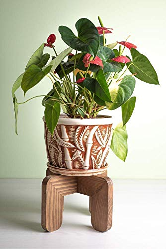 Wood Indoor Plant Stand Modern - Adjustable for pots up to 10 Inches - Pedestal Wooden Potted Planter Stool Rack - POT NOT INCLUDED
