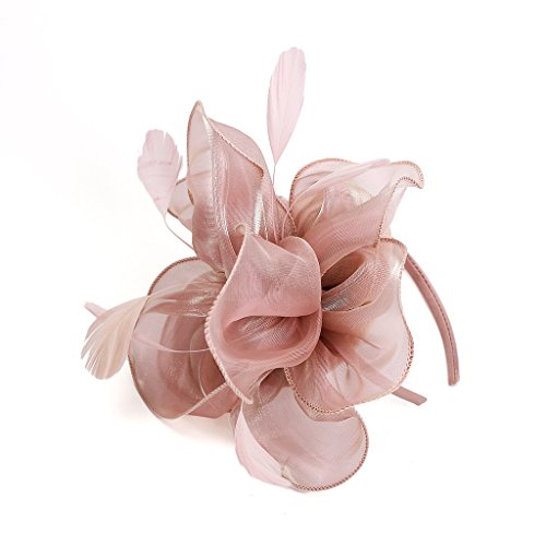 Price comparison product image LATIMOON Derby Fascinator Hat Feather Cocktail Tea Party Headwear Dress Accessories Hair Clip for Women and Girls-Pink