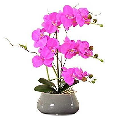 Lights & Lighting Battery Operated Garden Artificial Potted Lighted Energy Saving Decoration Home Table Led Light Living Room Orchid Flower