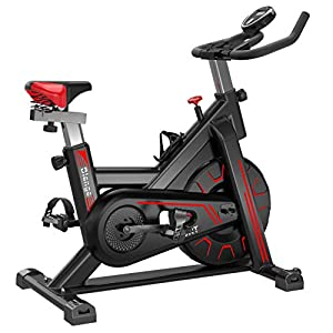 Well-Being-Matters 41v884Zo5cL._SS300_ Biange Stationary Bikes Indoor Cycling Exercise Bike, Fully-wrap 22 LB Flywheel Fitness spin bikes for Home Gym Cardio…