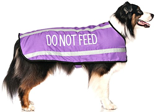 """DO NOT FEED Purple Warm Dog Coats S-M M-L L-XL Waterproof Reflective fleece Lined (May Have Allergies/Diet) Prevents Accidents By Warning Others of Your Dog in Advance (M-L Back 17"""" (43cm)"""