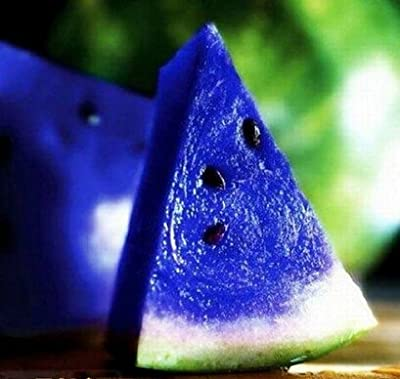 Cheap water melon seeds mini garden vegetables mix colors blue watermelon seeds fruits seeds water melon seed planting B014