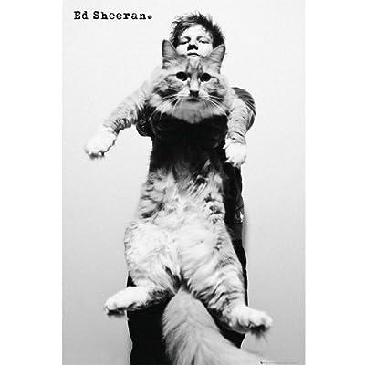 エド・シーラン Cat ポスター
