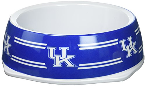 Collapsible Wildcats (Sporty K9 Collegiate Kentucky Wildcats Pet Bowl, Large)