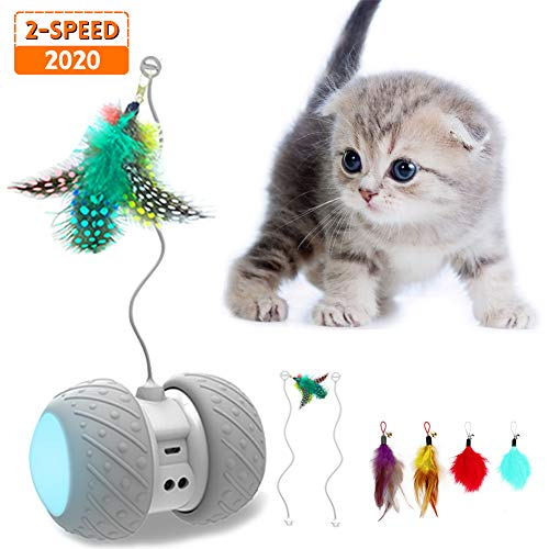 MalsiPree Robotic Interactive Cat Toy, Automatic Feather/Ball Teaser Toys for Kitten/Cats, USB Rechargeable Electronic…