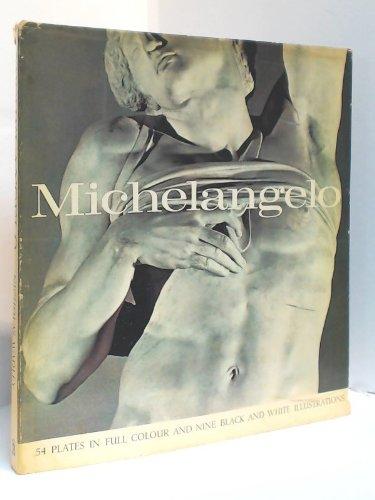 michelangelo spring art books