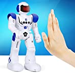 Hi-Tech Wireless Remote Control Robot Kids RC Robot Toy Senses Gesture, Sings, Dances for Boys, Girls, Kids, Children (Abbott)