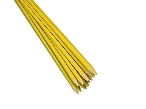EcoStake, 4-Feet, 20 Pack, 1/4-Inch Dia, Ecofriendly Farm Stakes, Tomato Stakes, Garden Stakes, Plant Stakes, Never Rust/rot, Better Than Wood Stakes And Bamboo Stakes, Yellow Eco Friendly Garden