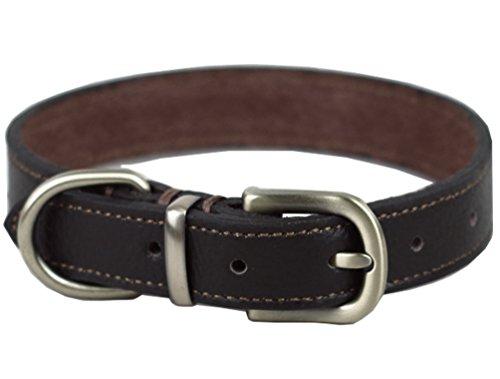 Tellpet Real Leather Dog Collar, Black, - Black Collar Leather Dog