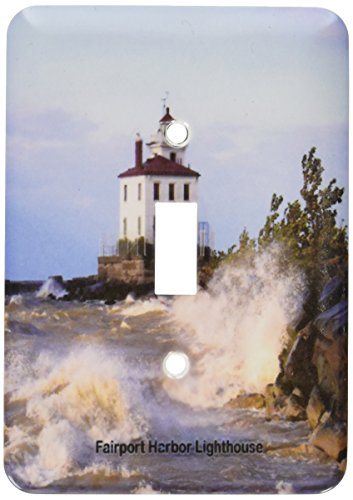 3dRose lsp_61705_1 Fairport Harbor Lighthouse Looking Over Lake Erie Single Toggle Switch ()