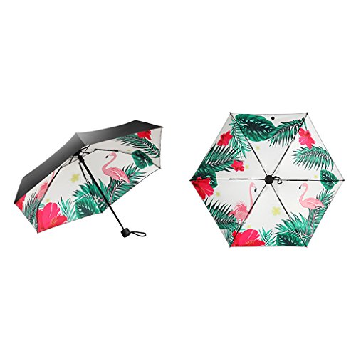 Amazon.com : Umbrella - Windproof Flamingo Sunscreen Umbrella UV Protection Female Folding Umbrella Dual Use 5 Fold Umbrella (Color : Black)  : Sports & ...